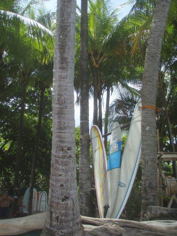 SURF COSTA RICA SAMARA